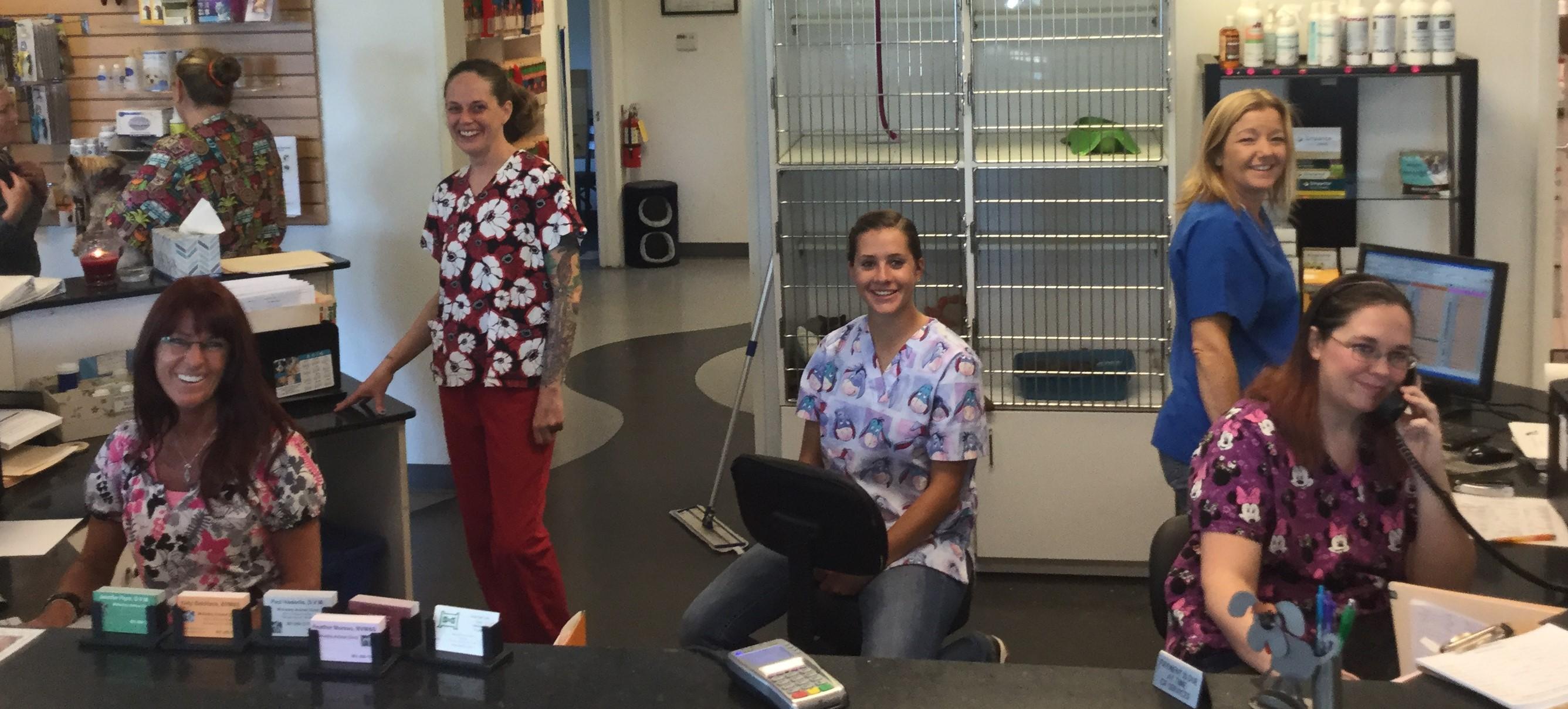 Midvalley Animal Clinic Veterinarian In Salt Lake City Ut